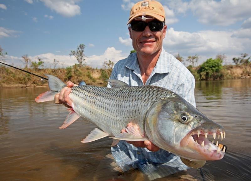 Tanzania tigerfish season week 11 aardvark mcleod for Tiger fish pictures