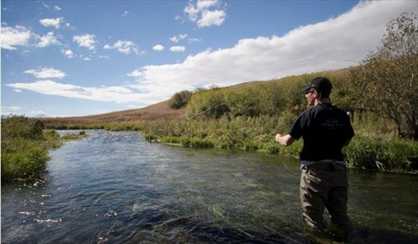 Yellowstone Valley Ranch, Montana, USA, Aardvark McLeod, trout, trout fishing