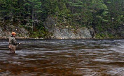 Upper Oxbow, Miramichi, East Coast Canada, Aardvark McLeod, Atlantic salmon, fishing in Canada