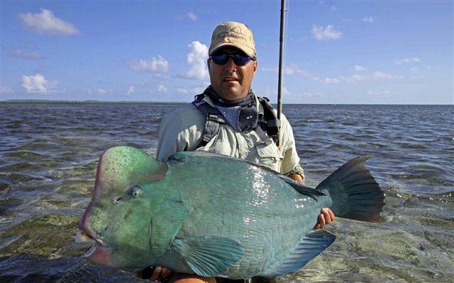 Farquhar atoll seychelles blog 21 28 october aardvark for Seychelles fly fishing