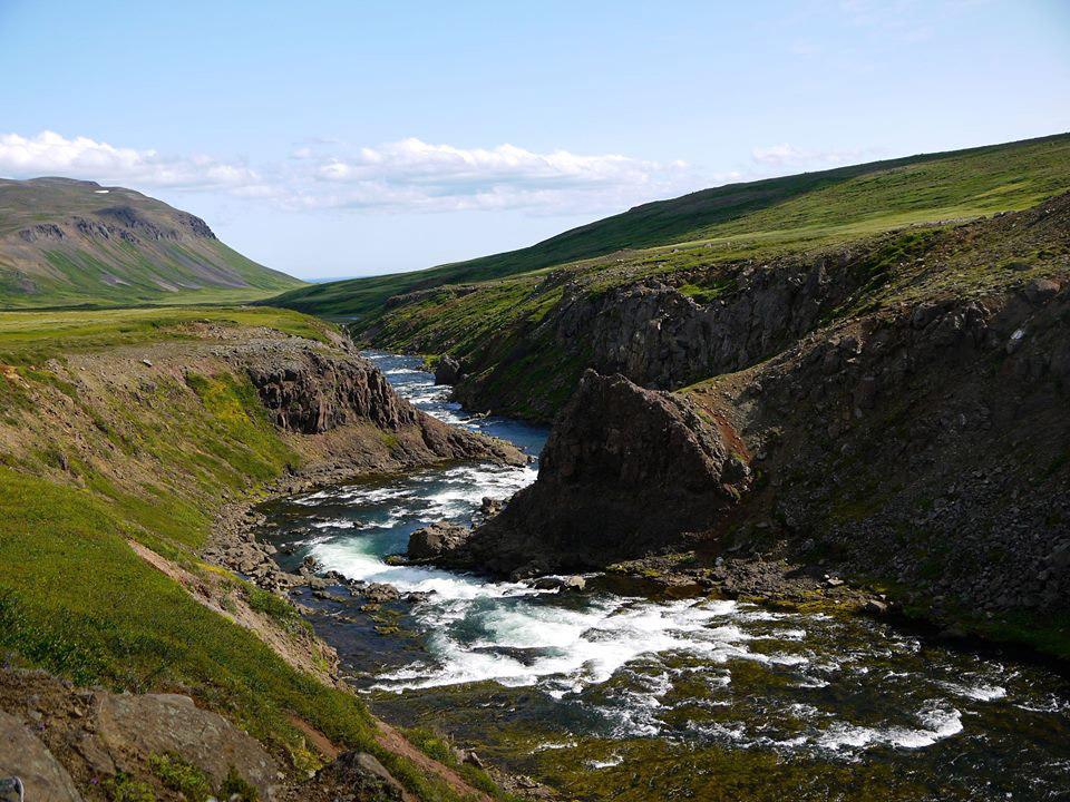 Svalbardsa, Iceland, salmon, Aardvark McLeod, Icelandic Fishing Guides, fishing in Iceland