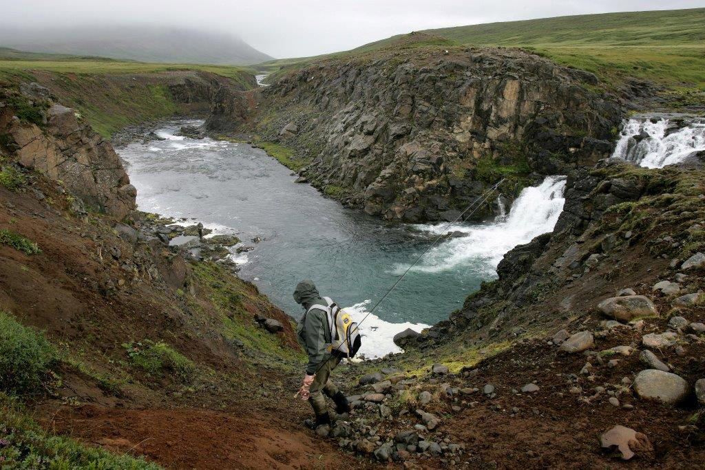 Svalbardsa, Iceland, salmon, Aardvark McLeod, Icelandic Fishing Guides, fishing in Iceland