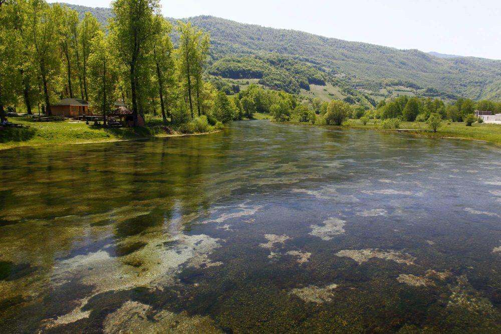 Fly Fishing Bosnia, Aardvark McLeod