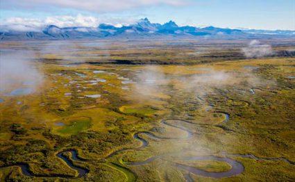 Rapids Camp Lodge, Alaska, fishing Alaska, Aardvark McLeod, salmon, grayling, dolly varden