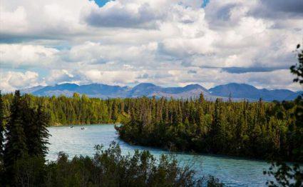 Great Alaska, Alaska, Aardvark McLeod, fishing in Alaska, king salmon, silver salmon, rainbow trout