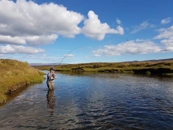 Myrarkvisl, Iceland, Aardvark McLeod, salmon, brown trout