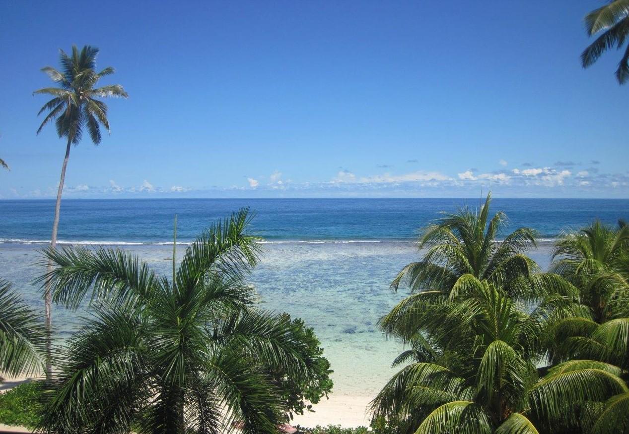 ardvark McLeod Mahe Seychelles