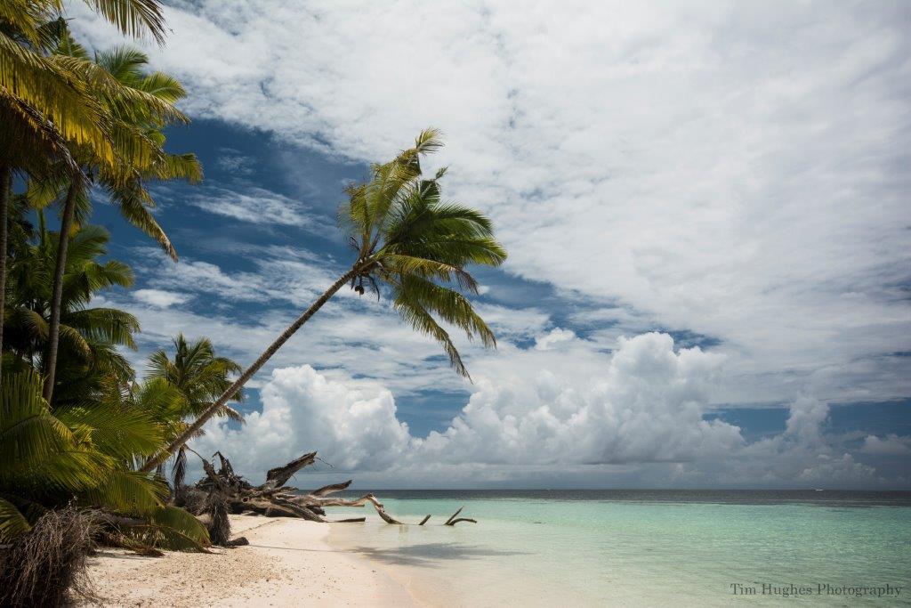 The Beach, Alphonse Island, Seychelles, Tim Hughes, Aardvark McLeod
