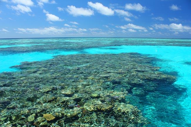Australia, Coral sea, Lizard Island, Aardvark McLeod