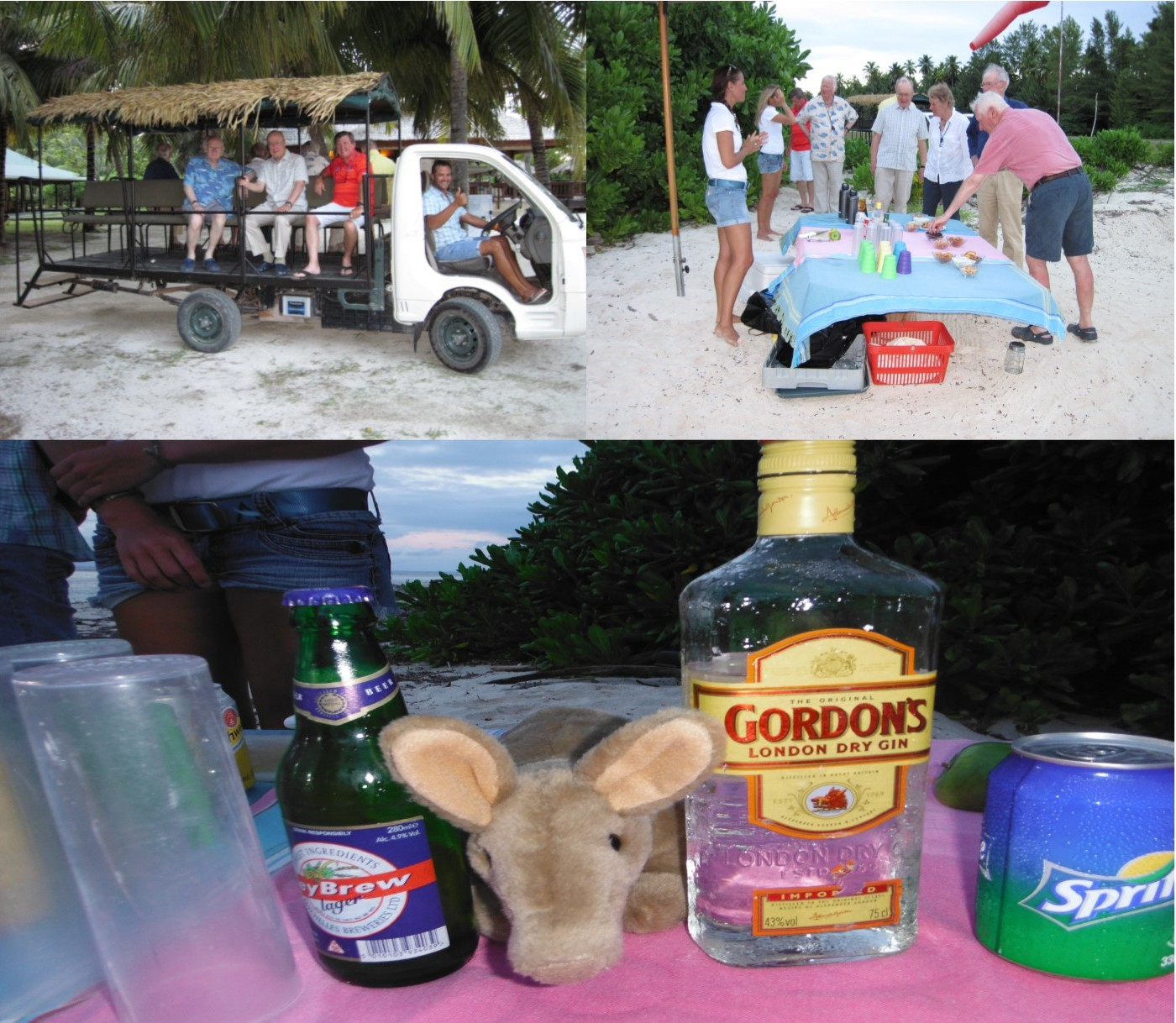 Aardvark McLeod Alphonse Island Seychelles