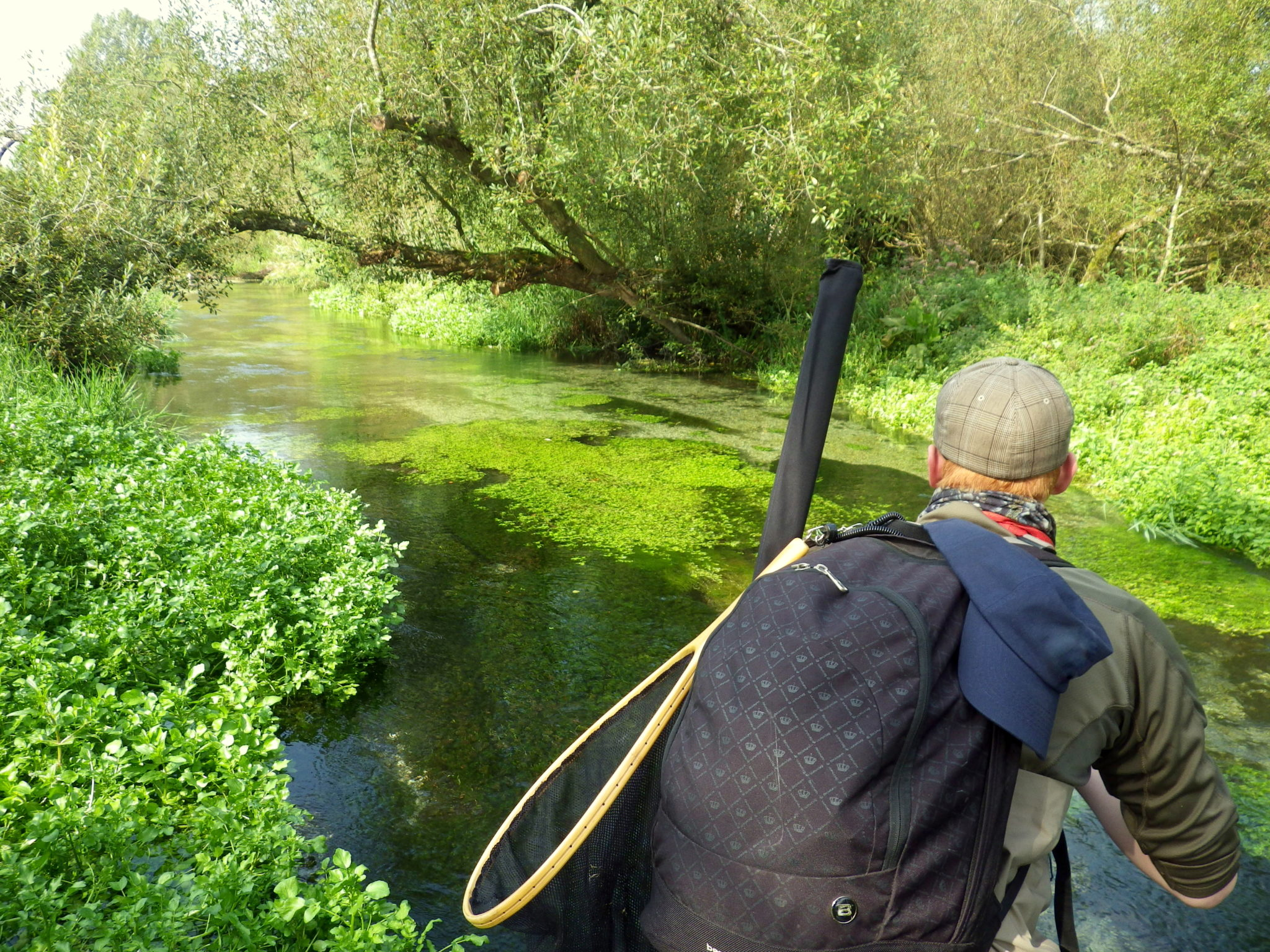 Bourne Rivulet, Hampshire chalkstream fishing, trout fishing, Aardvark McLeod, fishing the River Test