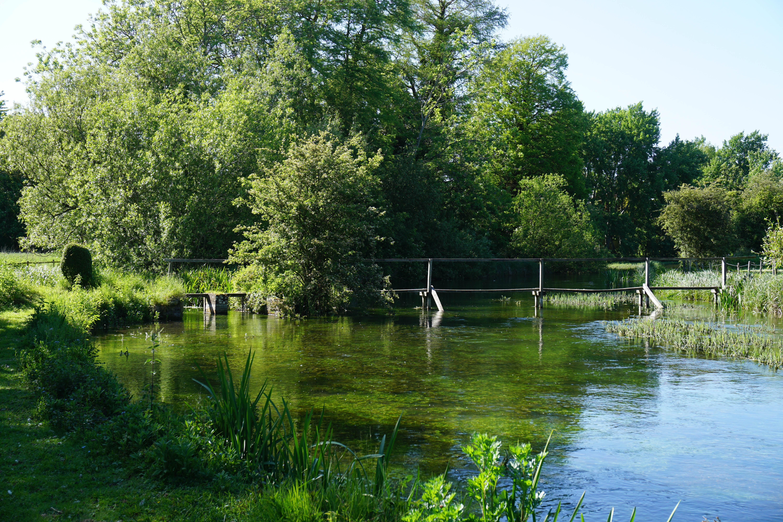 River Anton, Aardvark McLeod