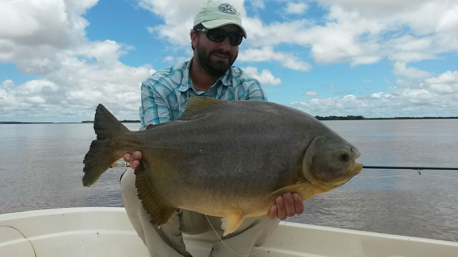 Argentina golden dorado fishing reports february 2016 for Fishing in argentina