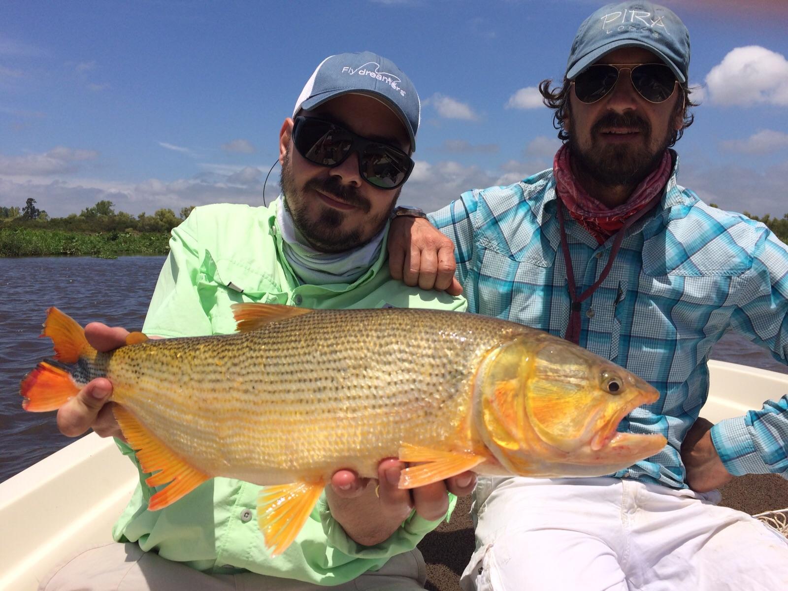 Argentina, Delta Lodge, Golden Dorado, Aardvark McLeod