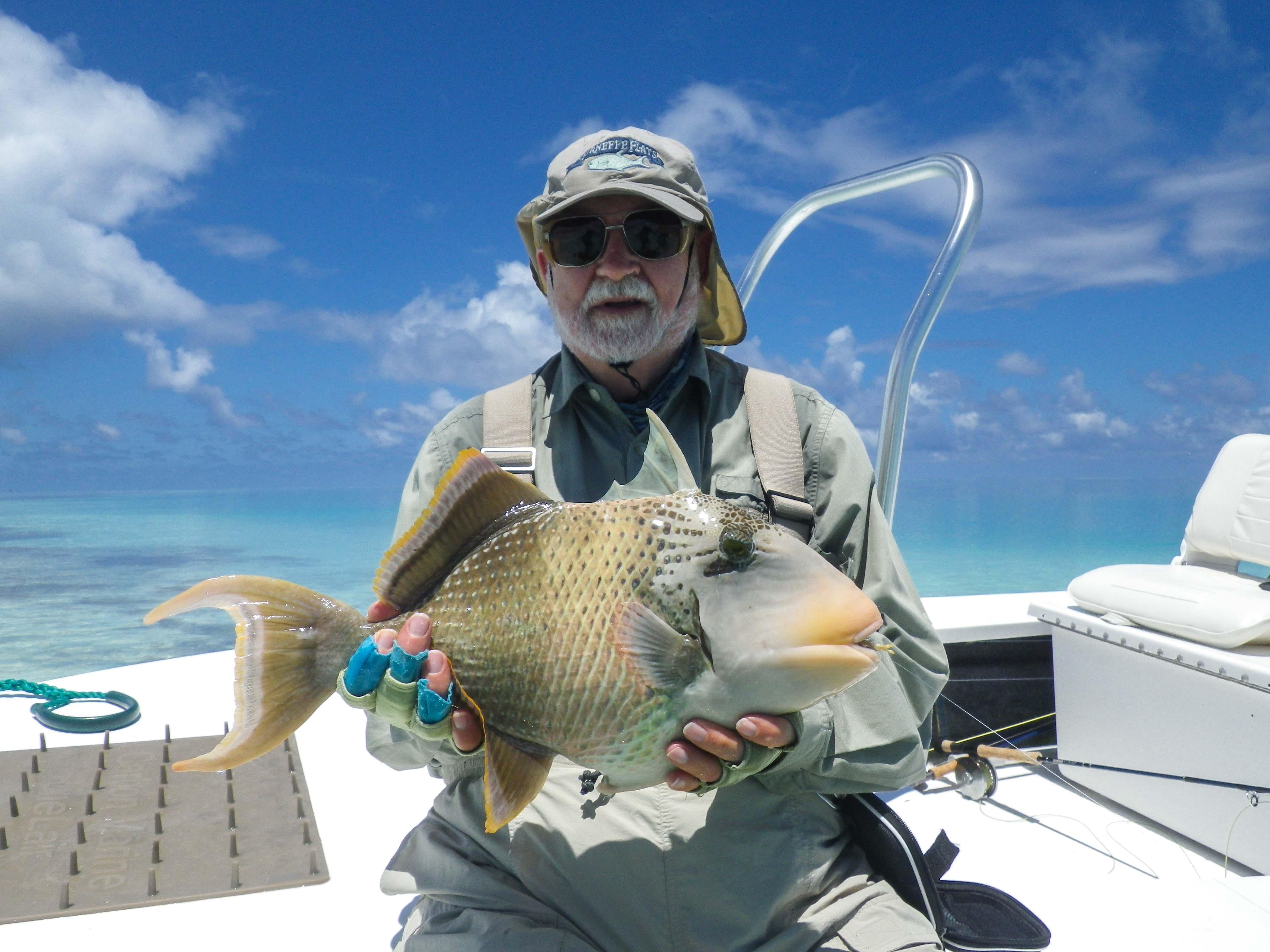 Alphonse Island Seychelles yellowmargin triggerfish Aardvark McLeod
