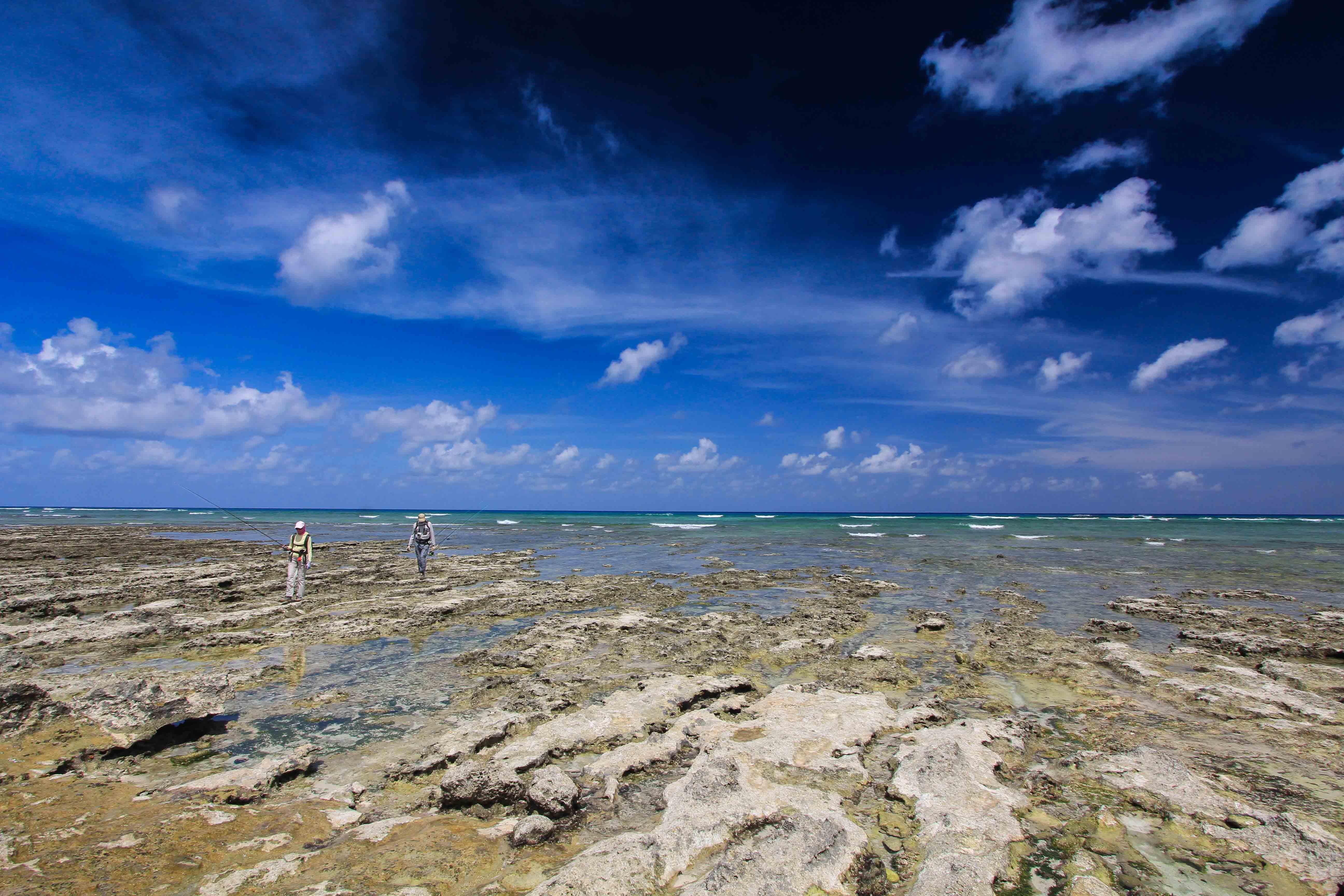 Astove Atoll Seychelles Aardvark McLeod
