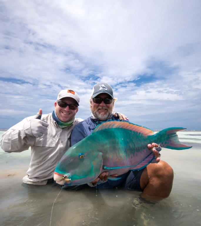 Alphonse Island Seychelles parrotfish Aardvark McLeod