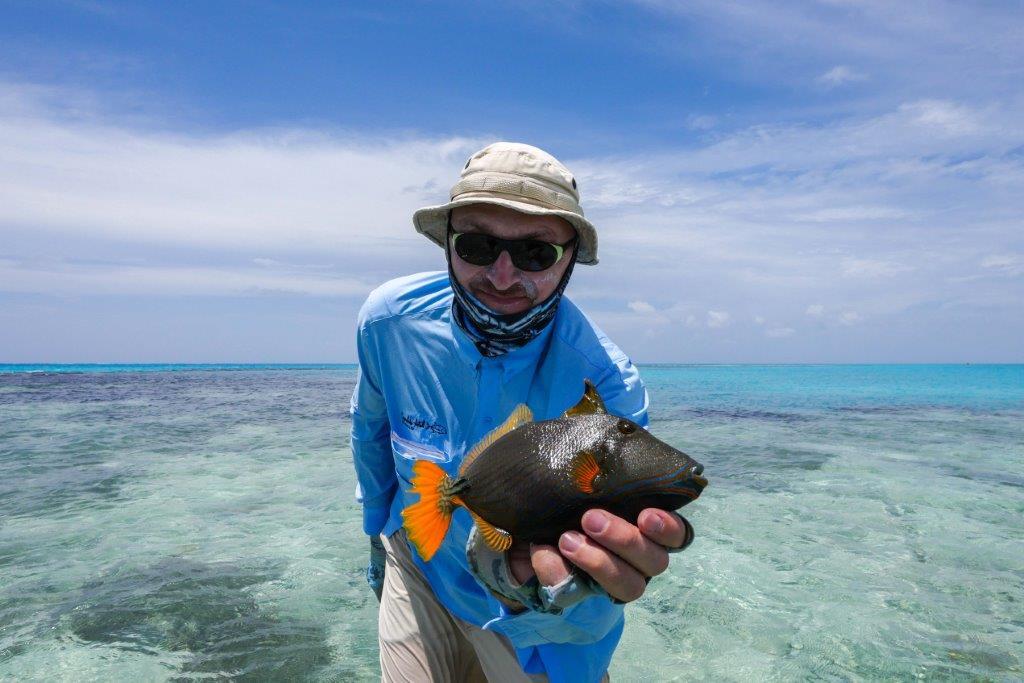 Alphonse Island Seychelles Aardvark McLeod indian triggerfish