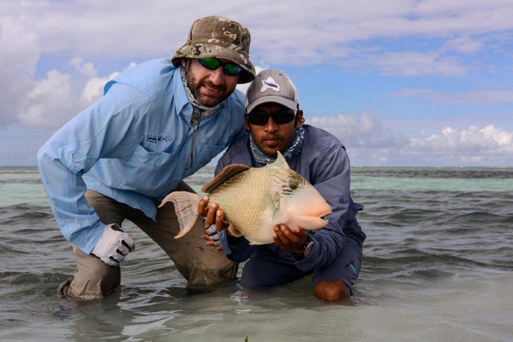 Alphonse Island Seychelles Aardvark McLeod yellowmargin triggerfish