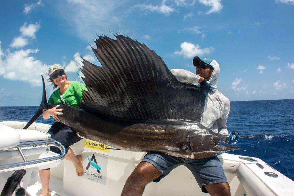 Alphonse Island Seychelles Aardvark McLeod sailfish