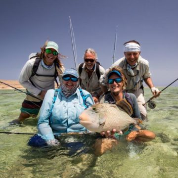 Sudan, triggerfish, titan triggerfish, yellow margin triggerfish, GT, bluefin trevally