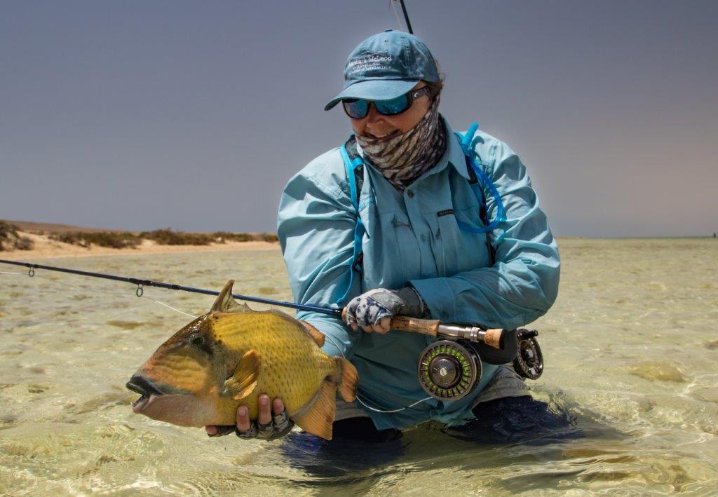 Aardvark McLeod Sudan triggerfish Charlotte Chilcott