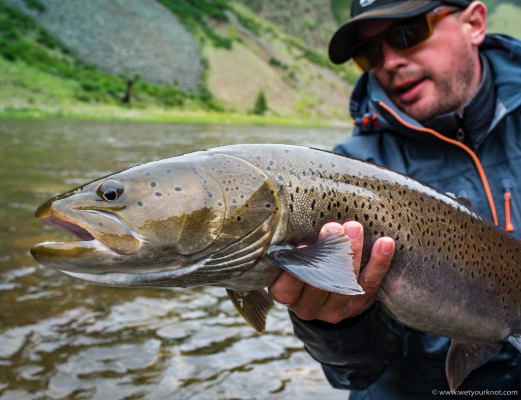 Mongolia a journey to the temple report by alex jardine for Taimen fishing mongolia
