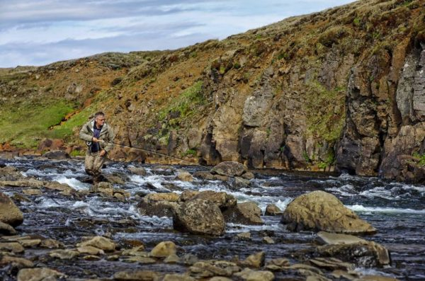 Kjarra, Iceland, salmon fishing, Iceland fishing guide, Aardvark McLeod, fishing in Iceland