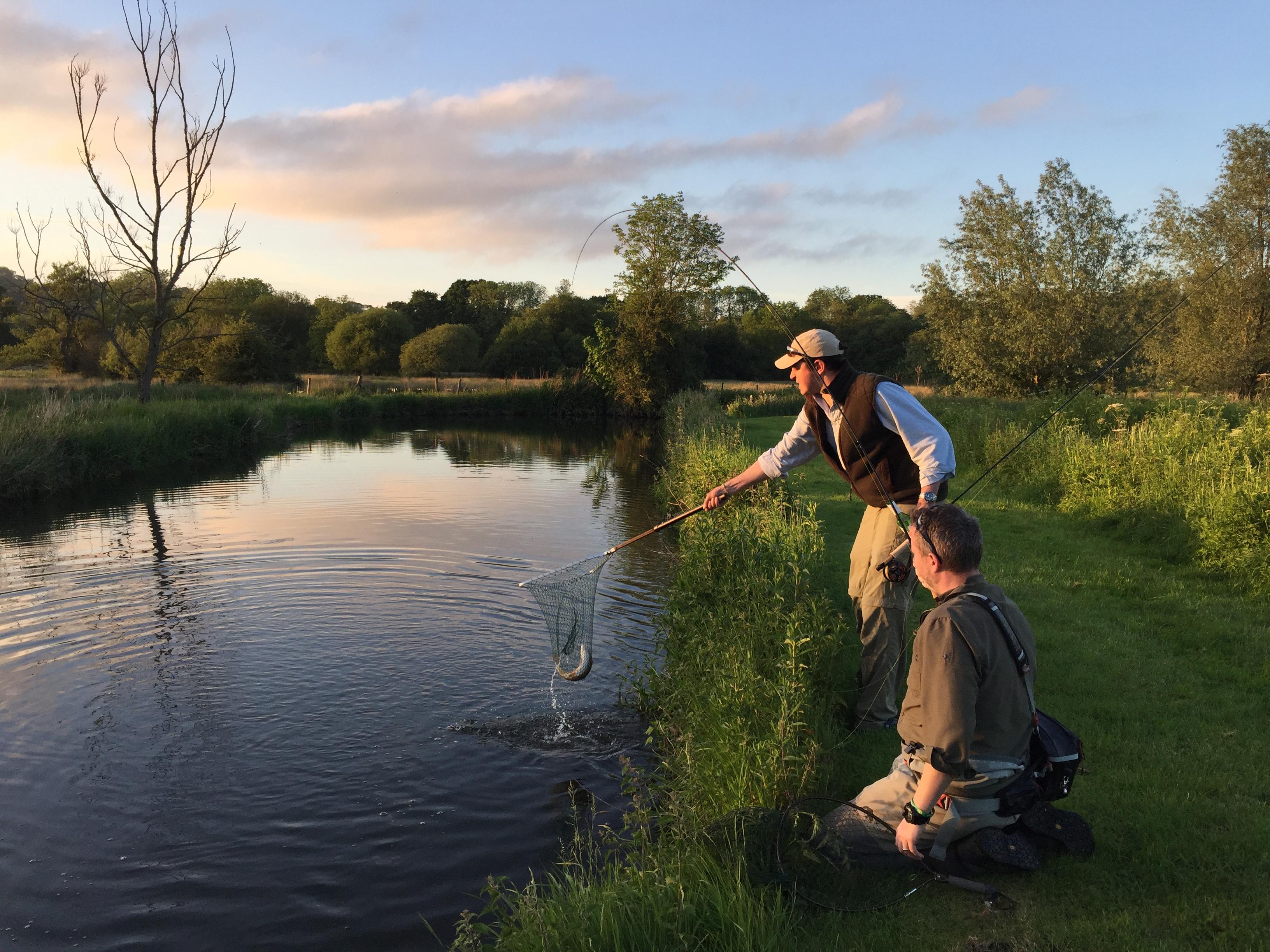 UK Fishing, Chalkstream, River Nadder, Trout fishing, chalkstreams