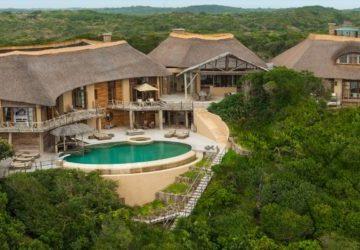 Mozambique Colina Verde Aardvark McLeod