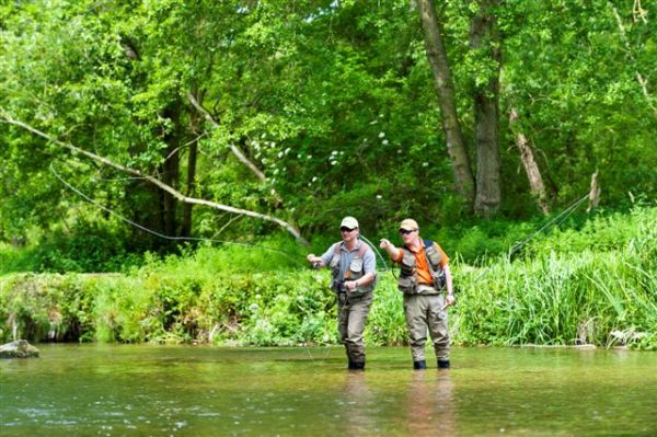 River Avon, Brown Trout, Chalkstream Fishing, Aardvark McLeod, learn to fish