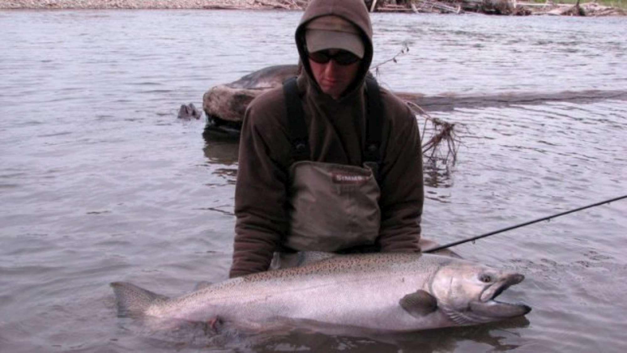 Canada king salmon chinook fishing in british columbia for British columbia fishing