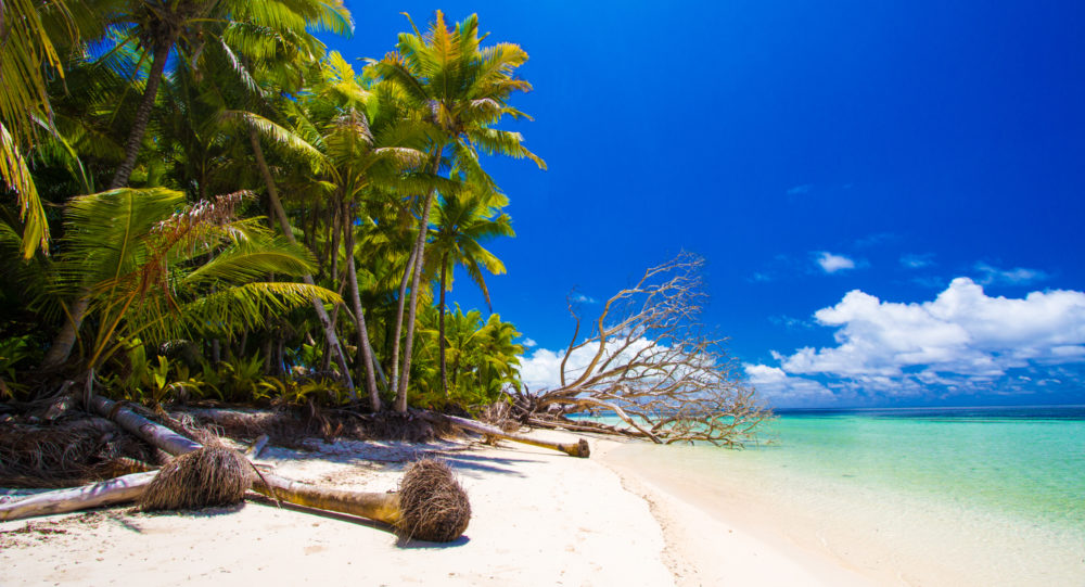 Alphonse Island Seychelles holiday Aardvark McLeod
