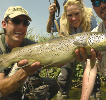 Salvelinus, spain, fly fishing, pyrenees, trout