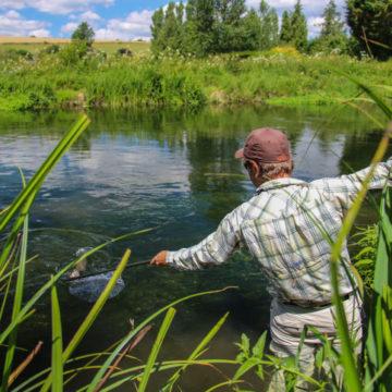 Chalkstream fishing, Aardvark Mcleod, Heale Broads