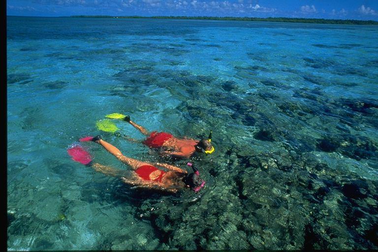 Turneffe Island Resort, Belize, Aardvark McLeod, snorkelling, bonefish, fishing in Belize
