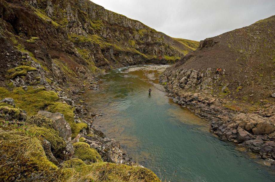 Midfjardara, salmon fishing, Iceland, Iceland Guide, Miðfjarðará