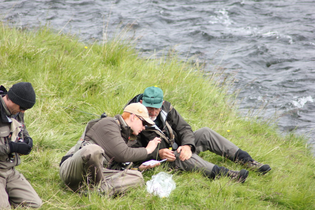 Iceland, trout fishing, laxardal,, laxardalur, travel tips