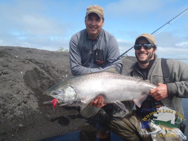 wildman lake lodge, alaska, fishing alaska, wilderness fishing alaska, fishing king salmon, coho, chinook, aardvark mcleod