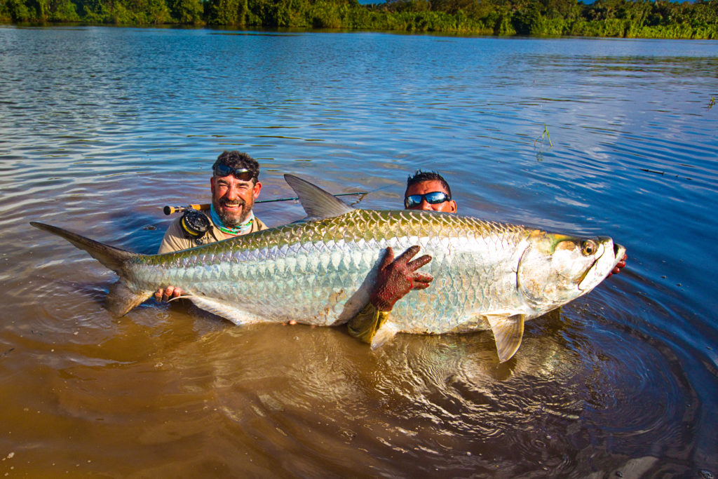Nicaragua tapam probably the biggest tarpon in the for Tarpon fish pictures