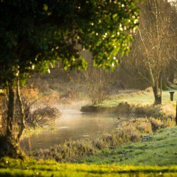 River Nadder, Chalkstream fishing, Berkshire, UK fishing guide