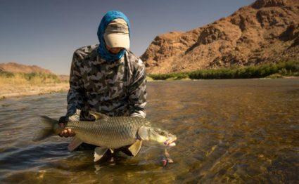 Kalarhari largemouth yellowfish, Orange River, South Africa, Aardvark McLeod, largemouth yellowfish, smallmouth yellowfish