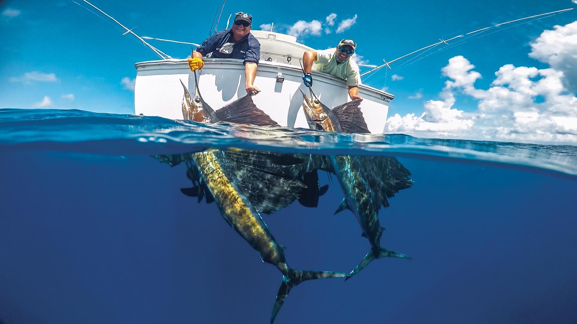 Alphonse island seychelles fishing aardvark mcleod for Fishing games 2017
