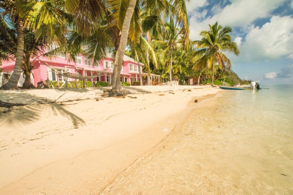 Bairs lodge, Bahamas, Aardvark McLeod