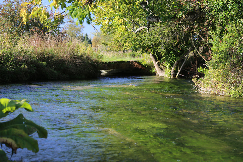 River Itchen, Brown Trout, Chalkstream Fishing, Aardvark McLeod