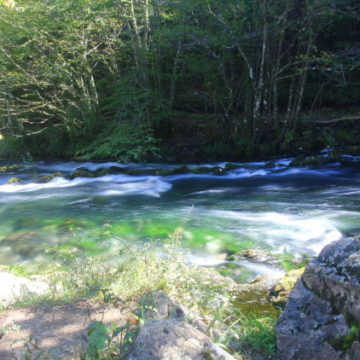 Bosnia, Fly Fishing, Brown Trout, dry fly fishing, grayling, Ribnik, Pliva