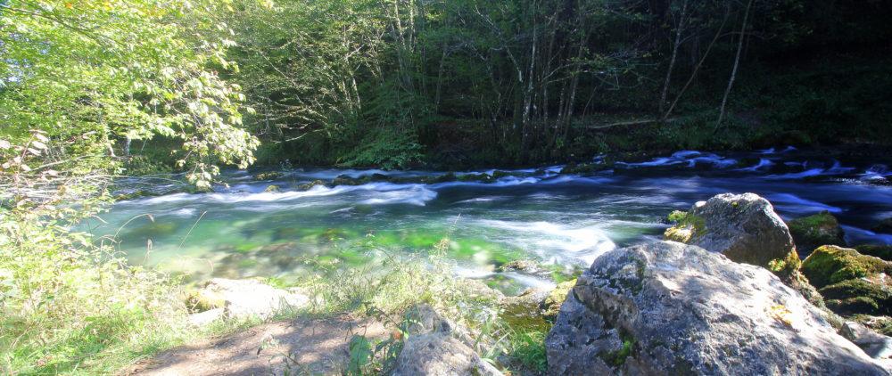 Bosnia, Fly Fishing, Brown Trout, dry fly fishing, grayling, Ribnik, Pliva