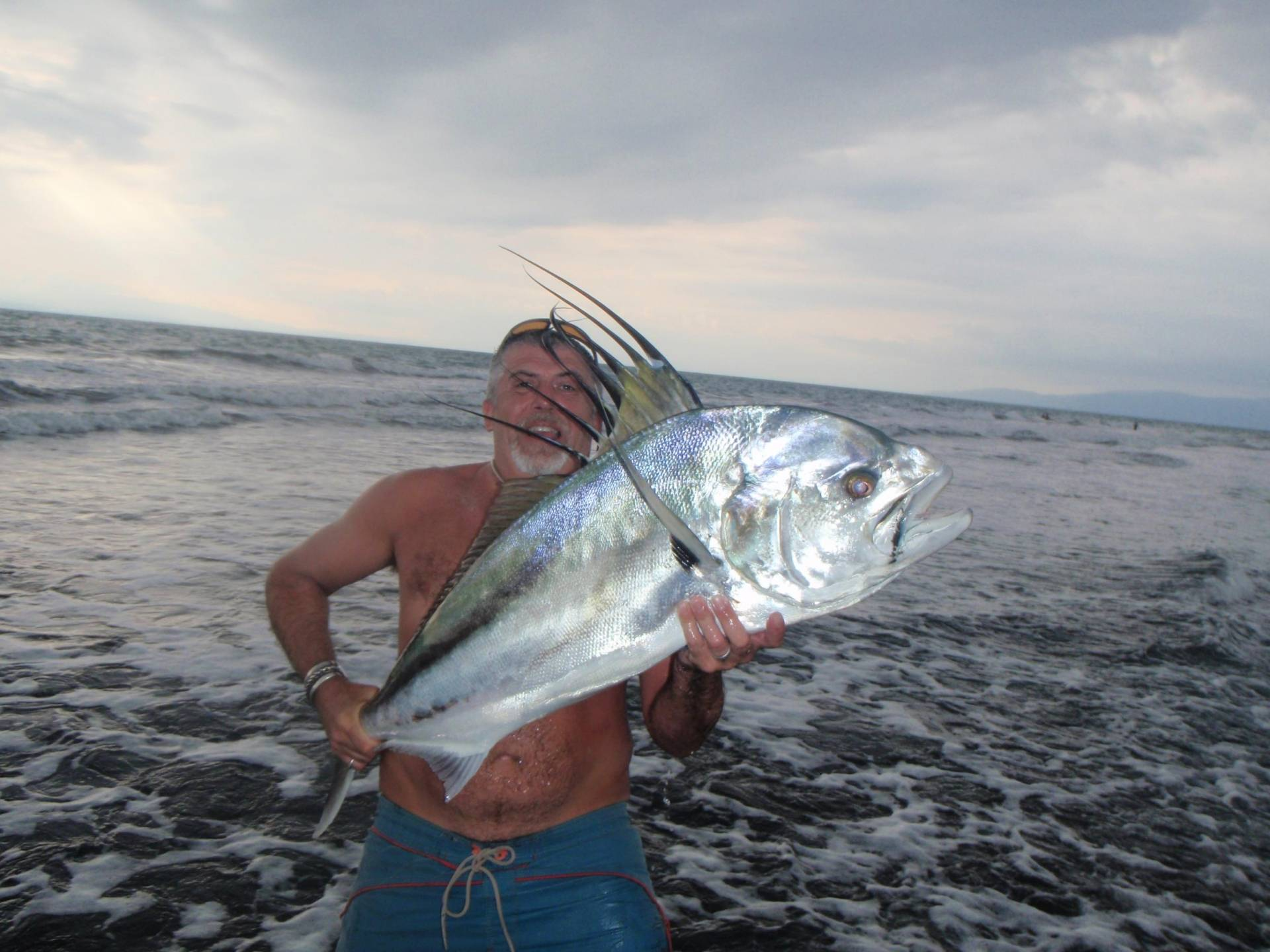 A roosterfish tail from costa rica aardvark mcleod for Rooster fish pictures