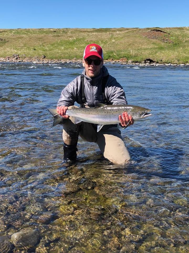 Atlantic salmon, Haukadalsa, Iceland, Aardvark McLeod
