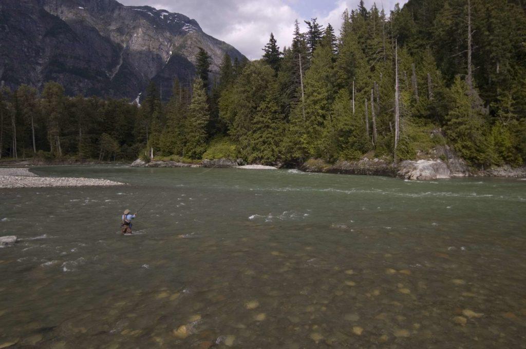 BC West, fishing BC West, Fishing British Columbia, fishing Canada, steelhead fishing canada, king salmon fishing canada, fly fishing canada, aardvark mcleod